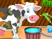 game Holstein Cow Care